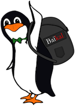 Migrate_Baikal_with_minimal_downtime