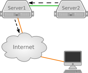 Access the internet from server without direct connection ...